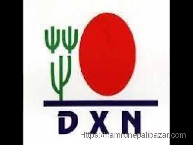D X N