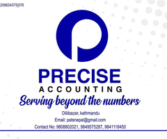 Precise Accounting And Tax Service