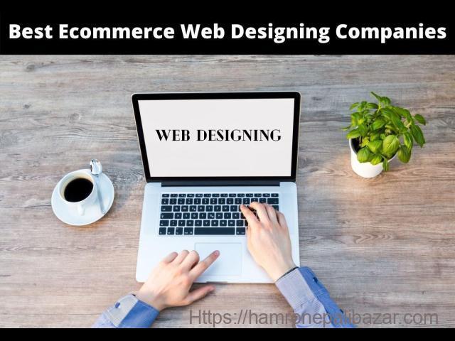 Best Ecommerce Web Designing Company