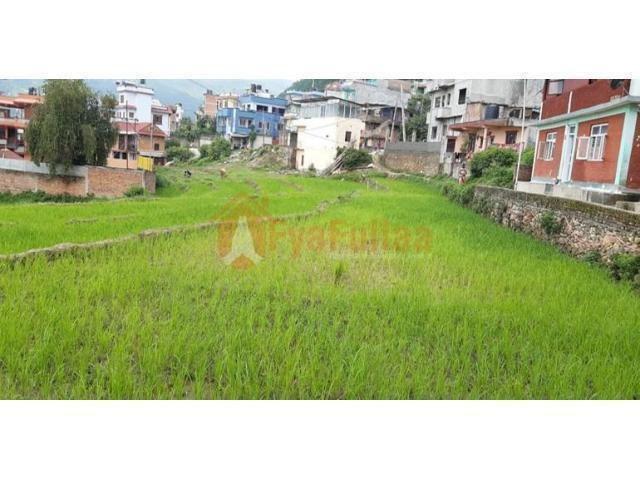Land sale in Sitapaila