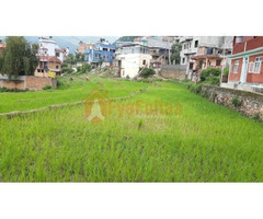 Land sale in Sitapaila