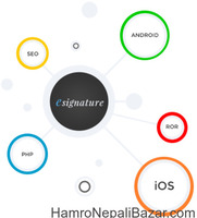 E-Signature Pvt. Ltd